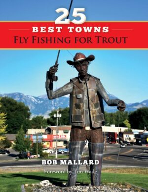 25 Best Towns to Fly Fishing for Trout