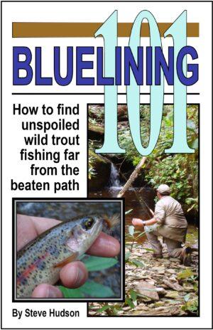 Bluelining 101