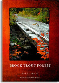 Brook Trout Forest