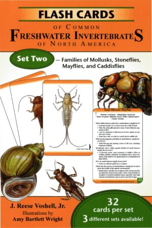 Flash Cards of Common Freshwater Invertebrates of North America Set 2: Families of Mollusks, Stoneflies, Mayflies and Caddisflies