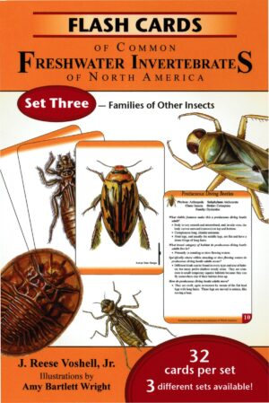 Flash Cards of Common Freshwater Invertebrates of North America Set 3: Families of Other Insects