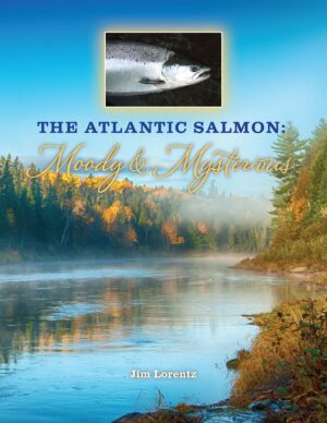Atlantic Salmon: Moody and Mysterious