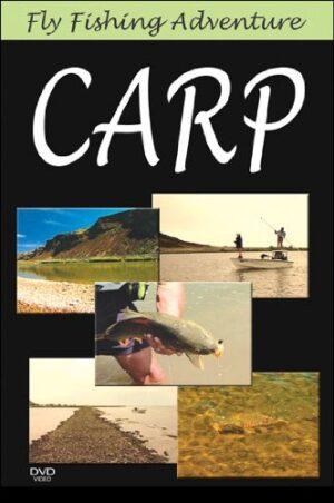 Fly Fishing Adventures: Carp